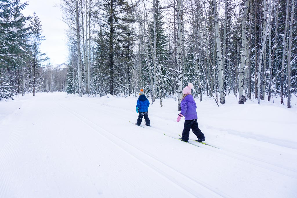 Wedge Connector Trail is one of the best kid-friendly Kananaskis cross-country ski trail
