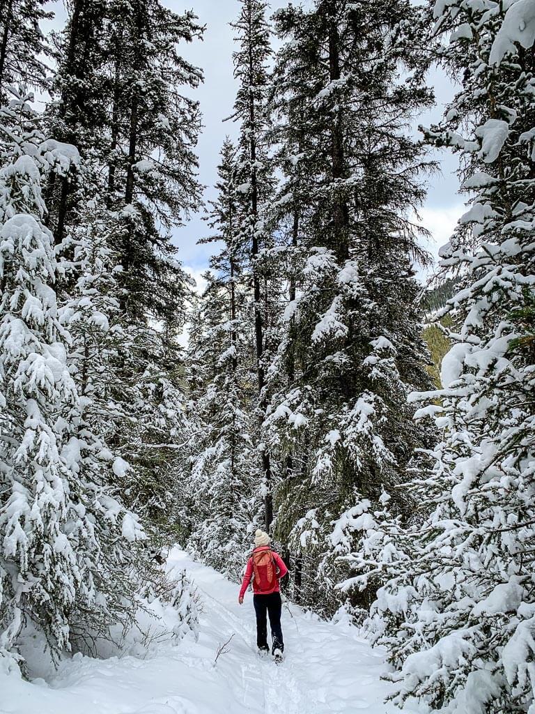 winter hiking Banff on Cascade Mountain