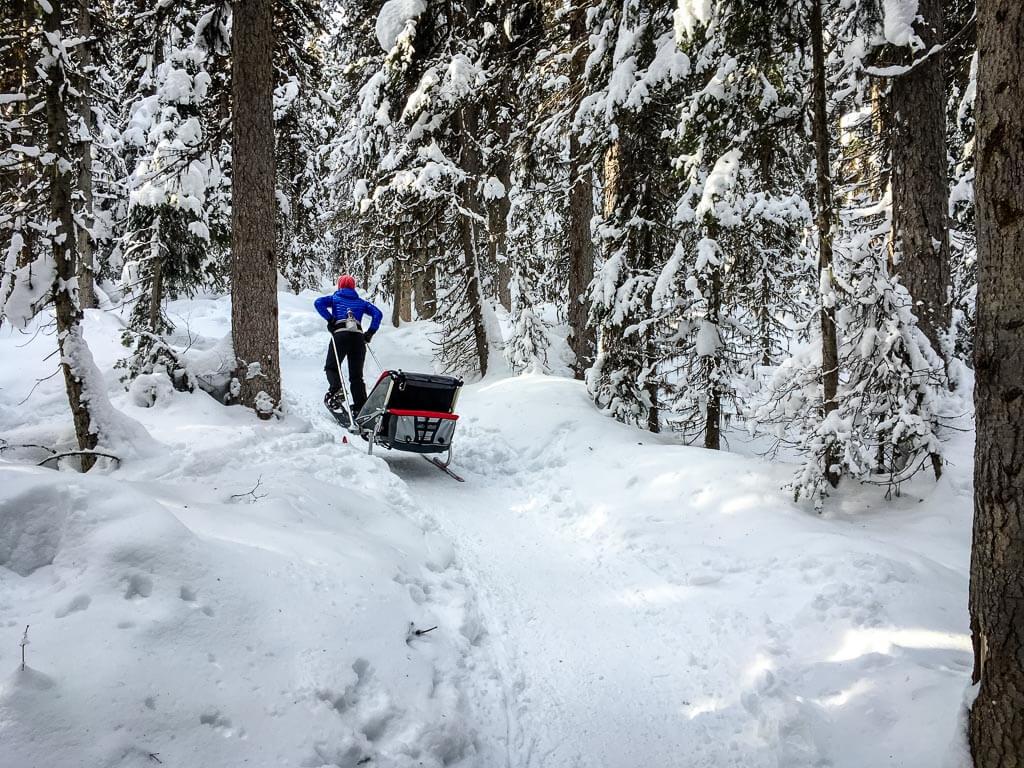 Fairview Lookout - lake louise snowshoe trails