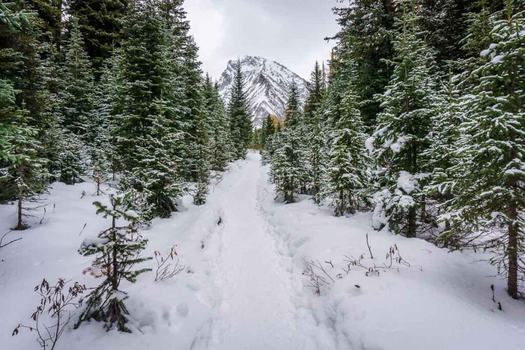 check the Chester Lake trail report before leaving home