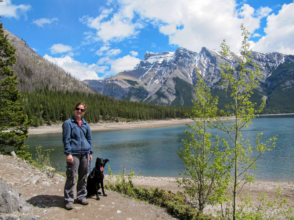 These Banff Pet Friendly Hotels make visiting Banff with a dog easy