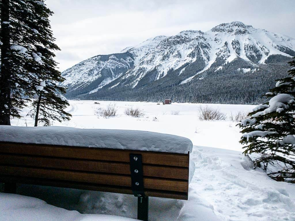 Bench on Marsh Loop Connector at the end of Lower Kananaskis Lake snowshoe