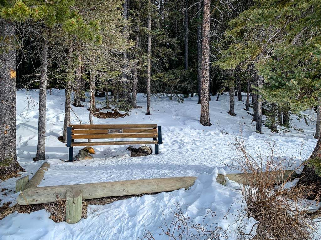 Benches along Marl Lake - part of Elkwood Snowshoe Loop