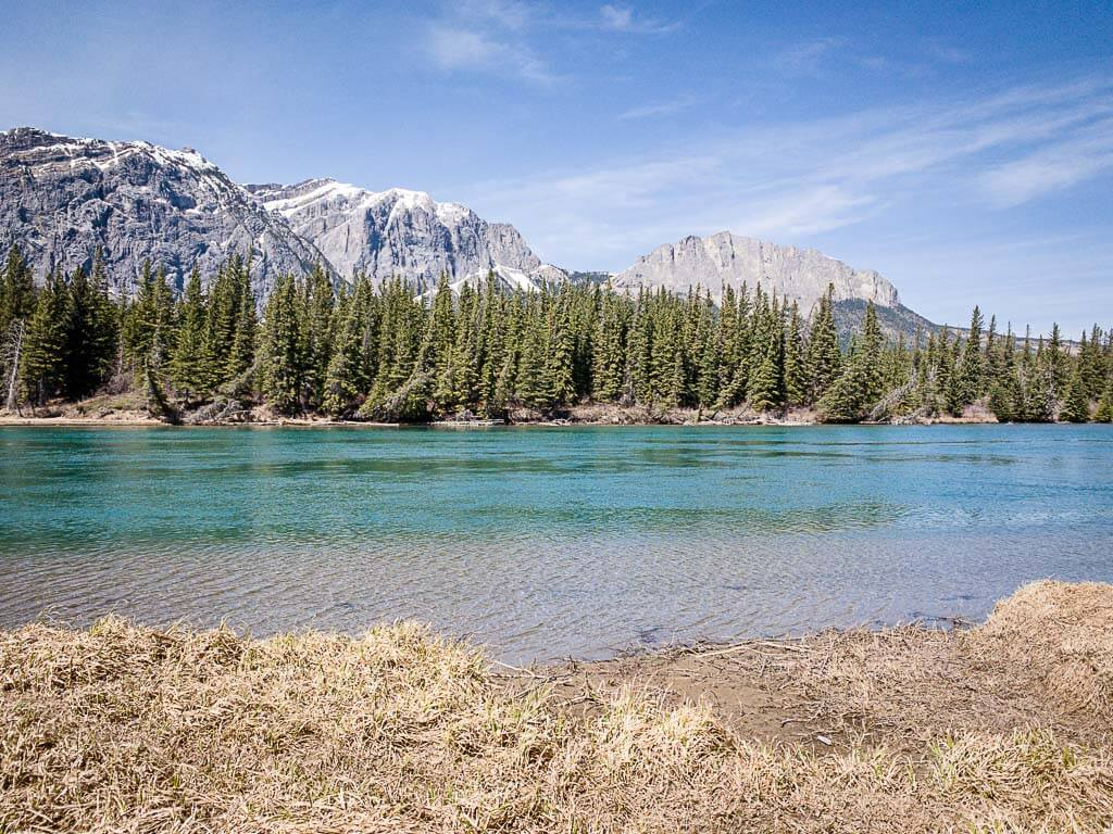 view of the Bow River from the Bow Valley Campground