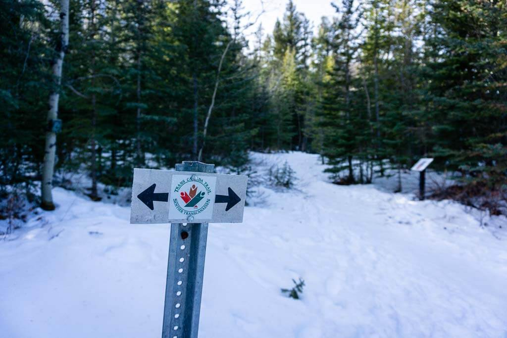 To get to the McGillivray Canyon Trail, you walk on the Trans Canada Trail for a bit