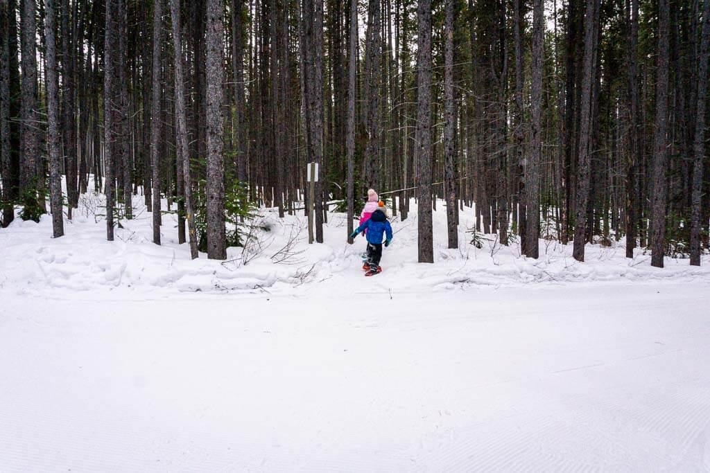 snowshoeing with kids in Kananaskis on Frozen Toad Loop