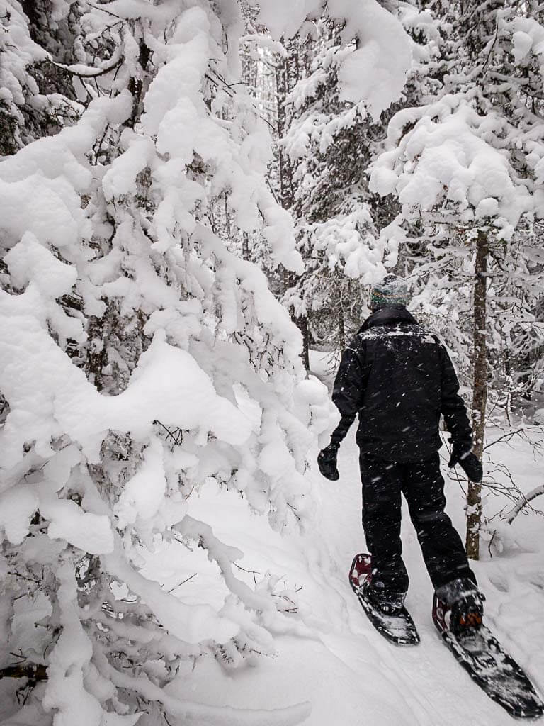 snowshoeing through snow covered trees in Banff on Upper Stoney Loop