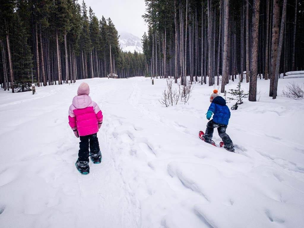 Frozen Toad through campground is an easy snowshoe with kids in Kananaskis