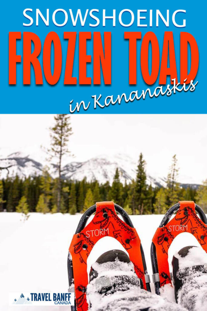 Snowshoeing the Frozen Toad Loop in Kananaskis. Add this easy snowshoe trail in Kananaskis to your list! Packed with incredible mountain scenery and sections through a frozen wetlands, it's also kid-friendly!