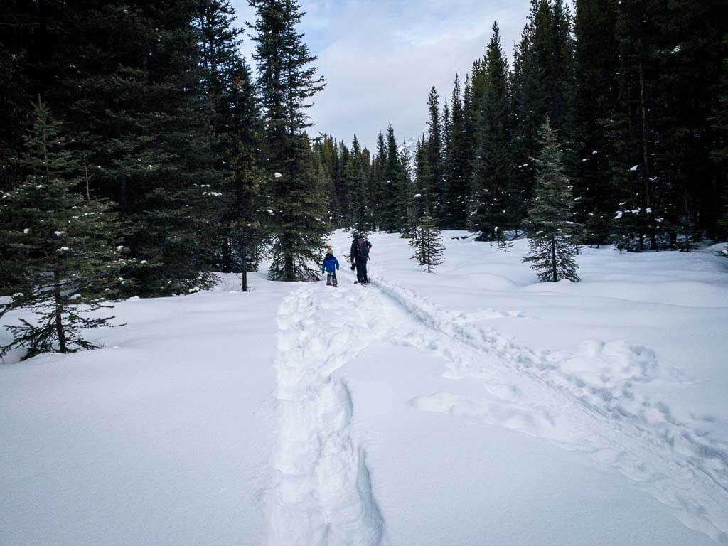 wide section along Frozen Toad Snowshoe Loop