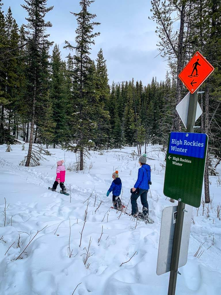 Frozen Toad Section of High Rockies Winter Trail