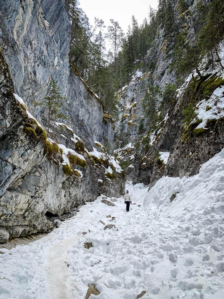 The Kananaskis McGillivray Canyon Trail is 5km long