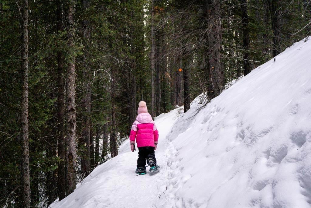 Small hill climb along Frozen Toad Snowshoe Loop in Kananaskis