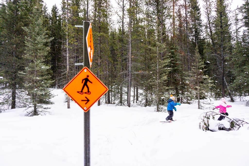 Kananaskis Snowshoe Trail Markers along Frozen Toad Loop