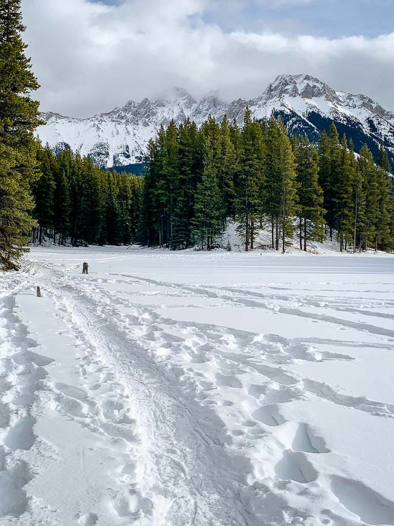 Looking back along Frozen Toad Snowshoe Loop