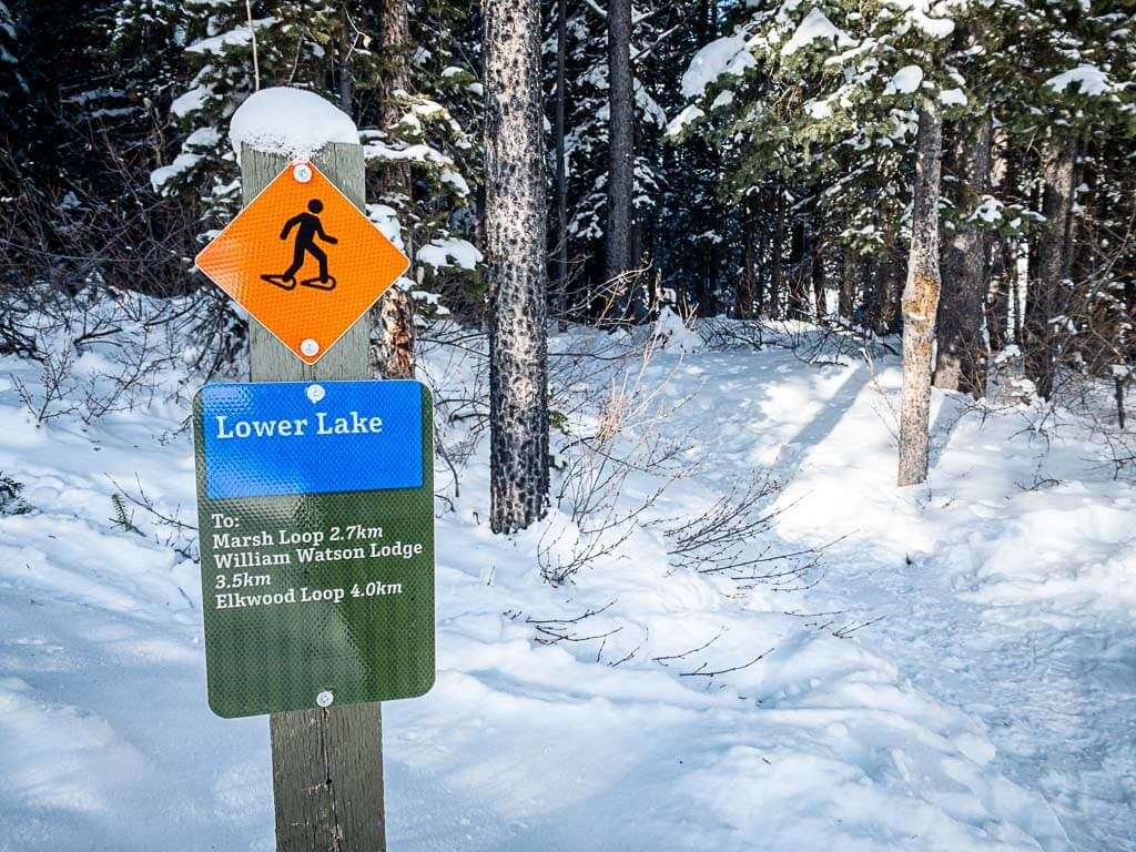 trail marker on Lower Kananaskis Lake snowshoe trail