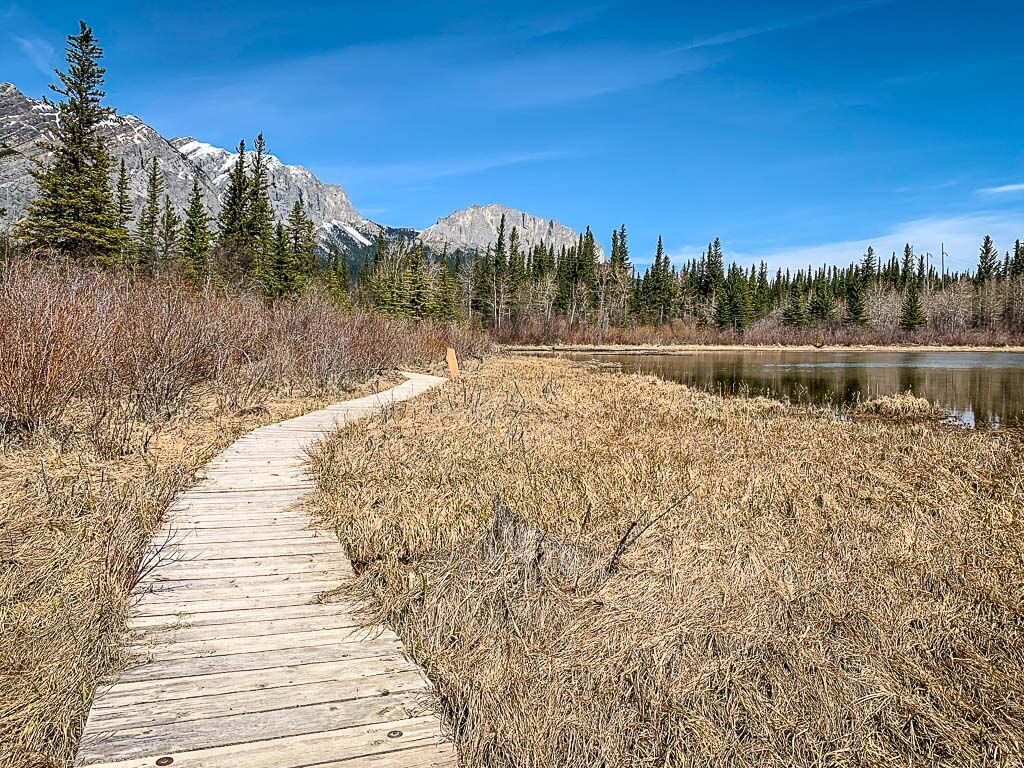 Many Springs Trail is an easy hike in Kananaskis