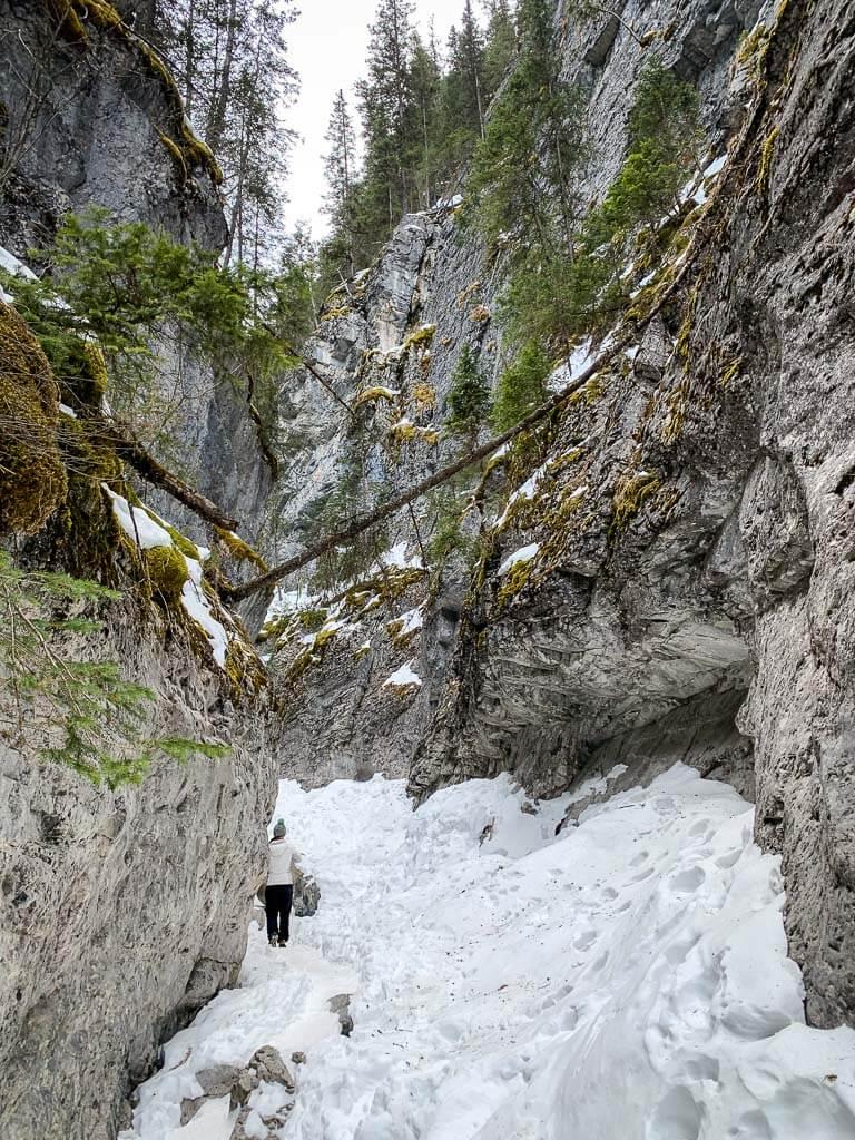 McGillivray Canyon winter hike in Kananaskis