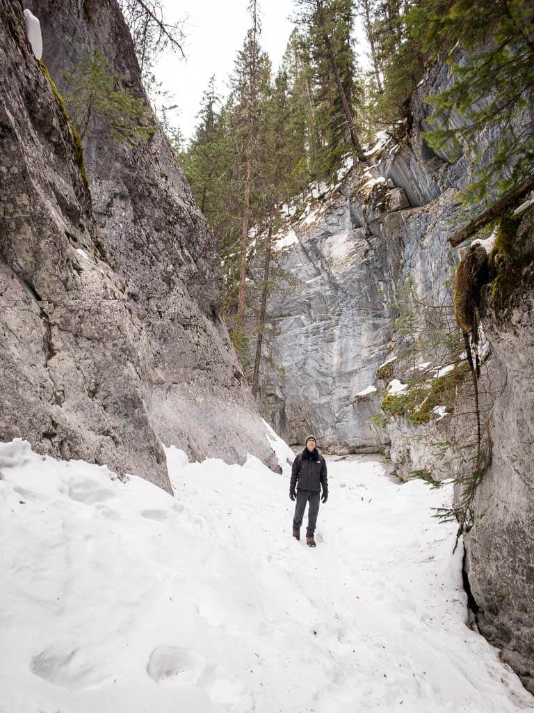 There is no official McGillivray Canyon Trail Report from Alberta Parks
