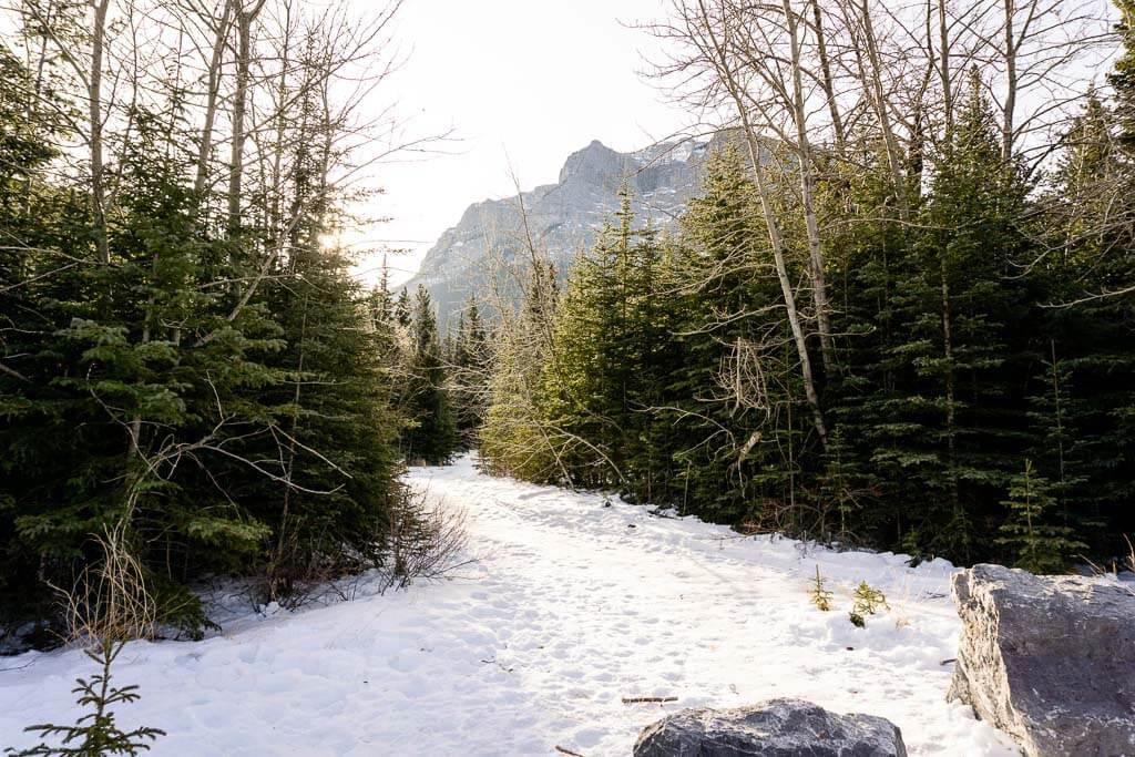 McGillivray Creek & Canyon Trailhead
