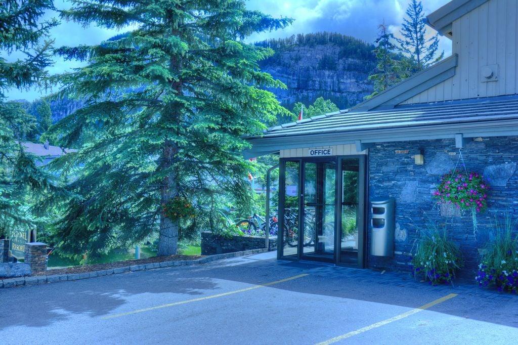 pet friendly hotels banff national park