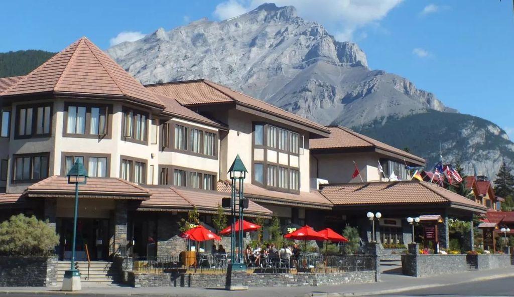 Banff's Elk + Avenue Hotel is one of the best pet friendly hotels in Alberta