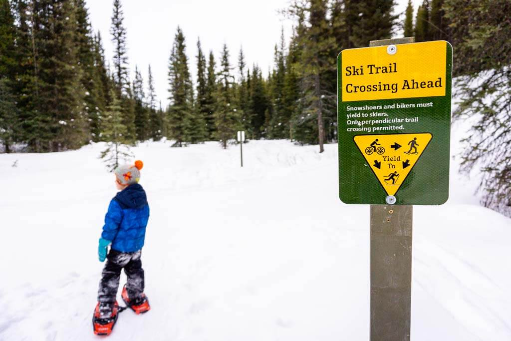 Ski Trail Crossing Sign along Frozen Toad snowshoe trail