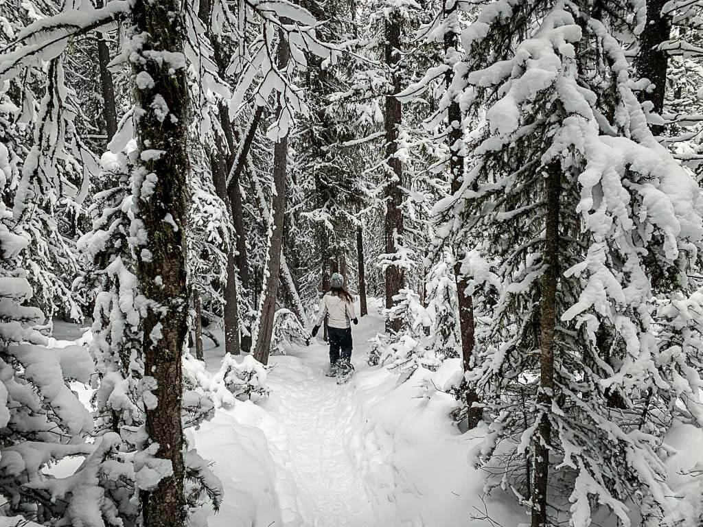 snowshoeing loop along Upper Stoney at Norquay in Banff