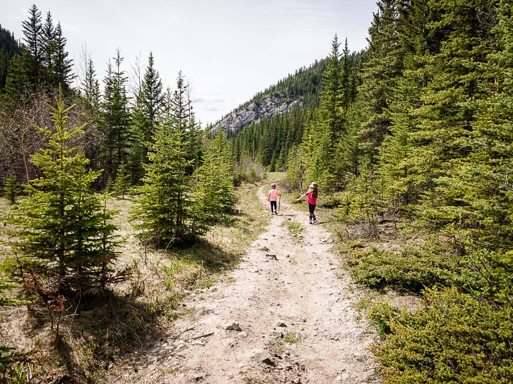 trail to Quaite Valley Kananaskis campground in backcountry