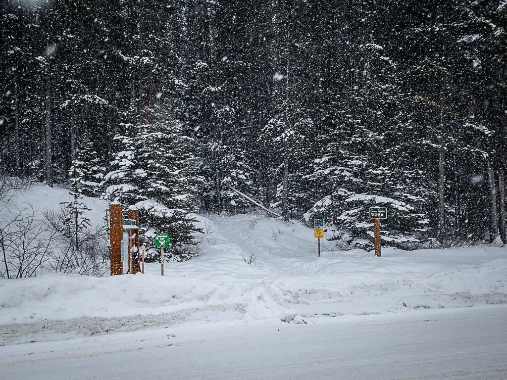 Upper Stoney Loop trailhead in Mt Norquay parking lot