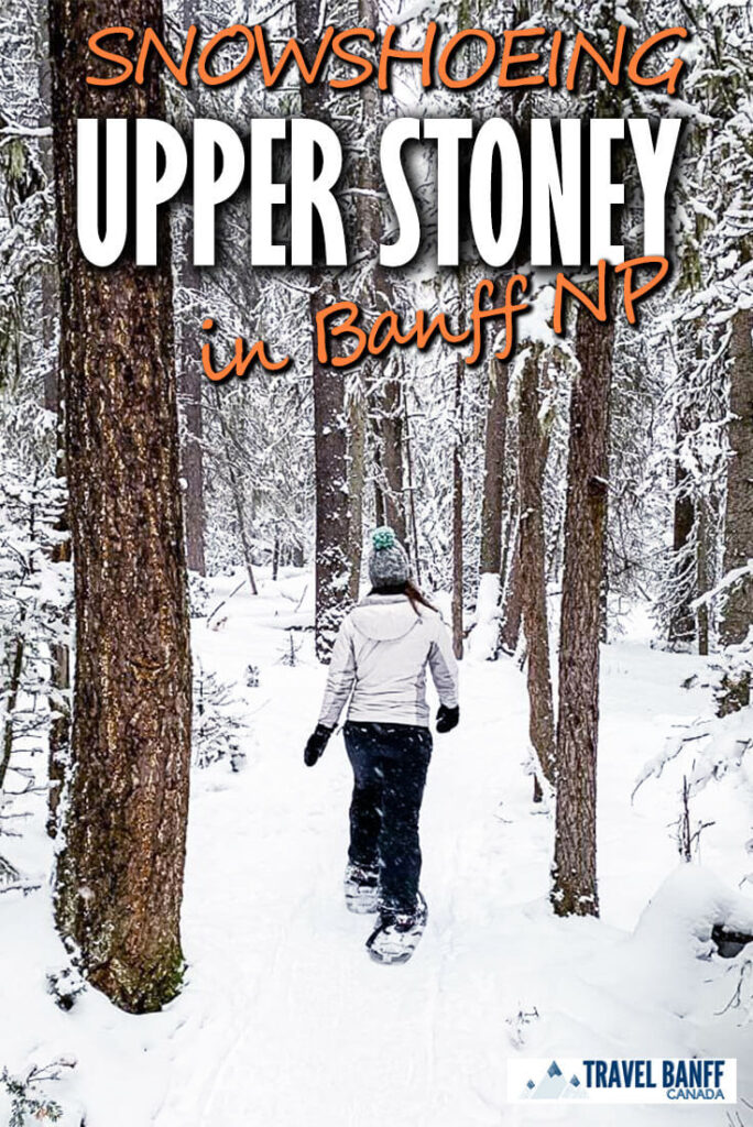 Try this fun, short snowshoe trail in Banff. The Upper Stoney Lookout snowshoe winds through a dense forest up to the summit before looping back down.