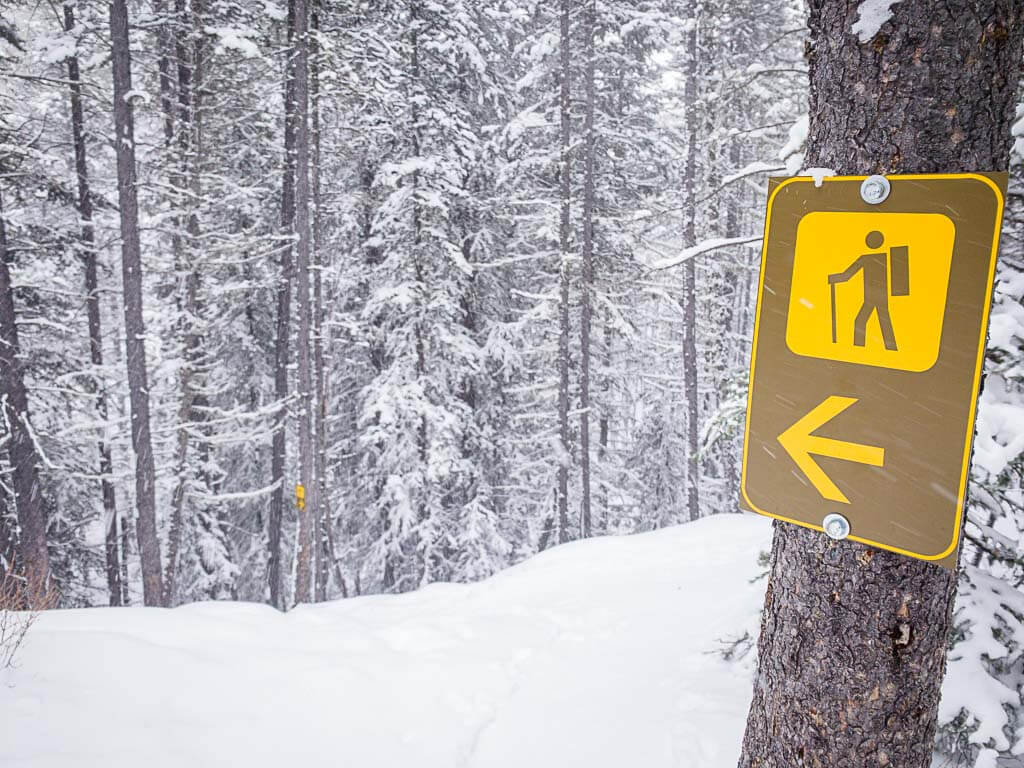 trail marker signs on Upper Stoney Loop snowshoe