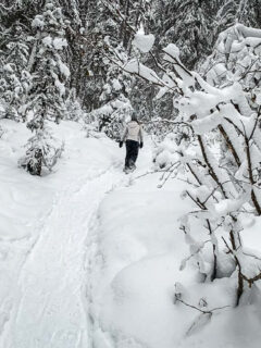 Snowshoeing in Banff on Upper Stoney Lookout trail