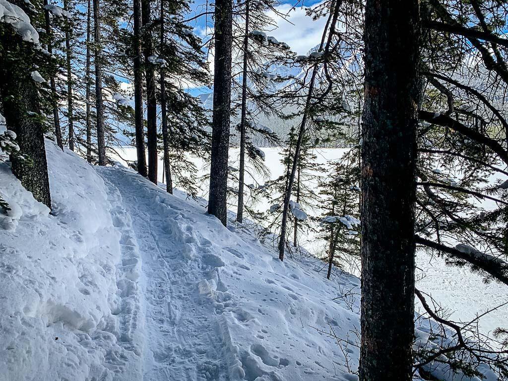 Lower Kananaskis Lake trail is an easy Kananaskis snowshoe trail