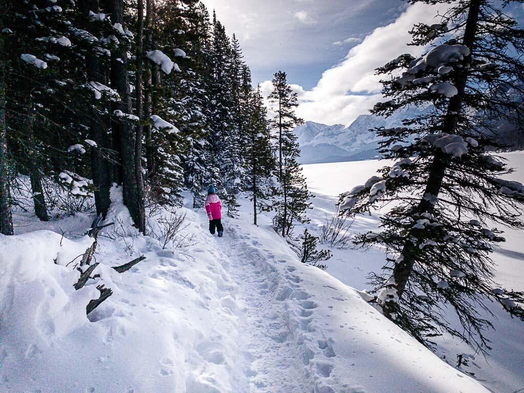 easy Kananaskis snowshoe trail - Lower Kananaskis Lake