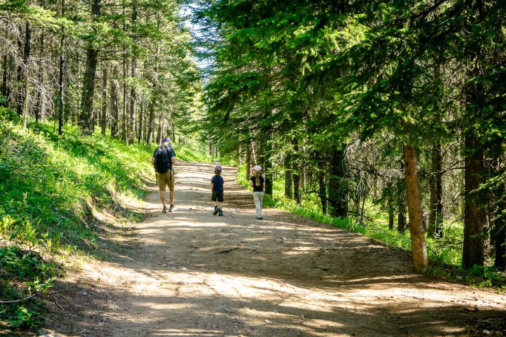 Yates Mountain is an excellent Father's Day hike in Kananaskis