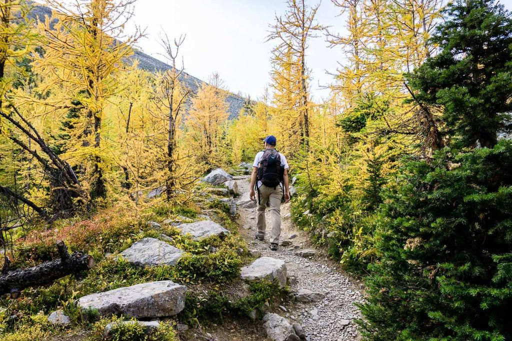 Fall is one of the best time to go to Banff on a budget