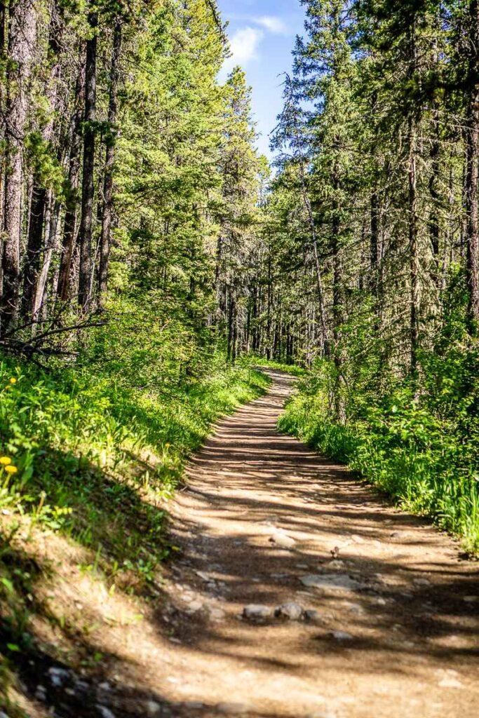 Yates Mountain hike in Kananaskis, Alberta near Barrier Lake
