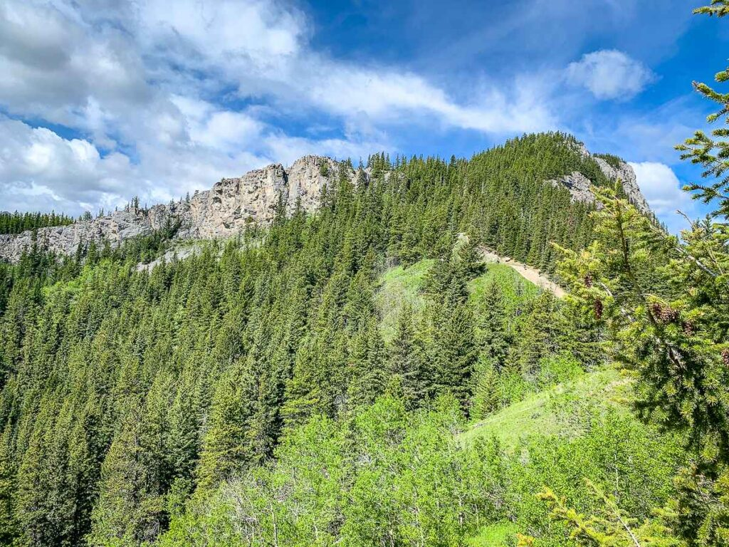 The upper leg of the Yates Mountain Trail leads to an exposed opening which provides wonderful views of Barrier Lake and its surrounding rocky mountains