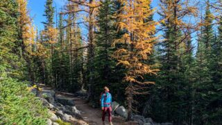 Discover How to Visit Banff on a Budget