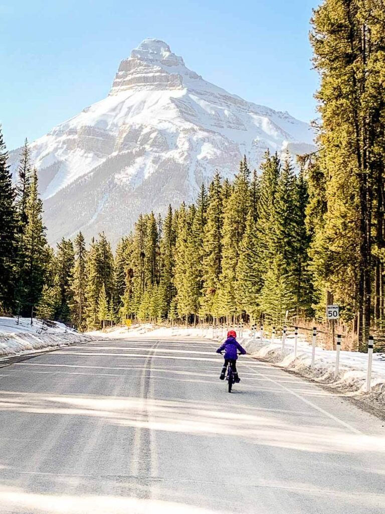 Kids Biking Castle Junction to Johnston Canyon on Bow Valley Parkway in Banff