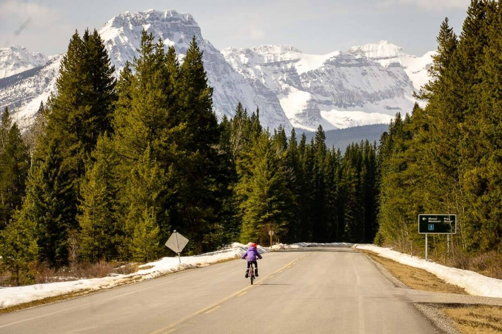 Biking Bow Valley Parkway with Kids to Johnston Canyon