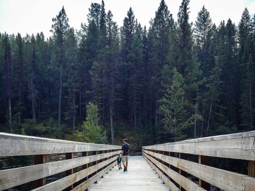 Bridge across Healy Creek Trail in Banff National Park