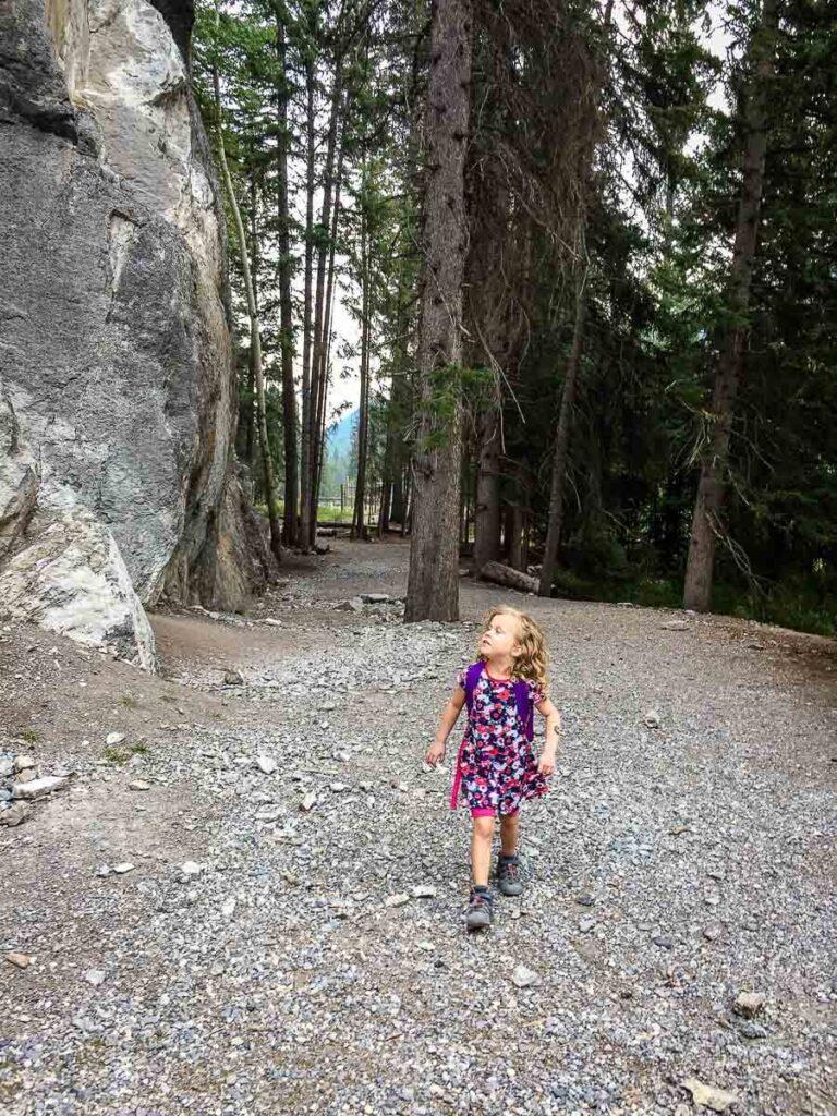 Healy Creek - Kid friendly hike in Banff National Park