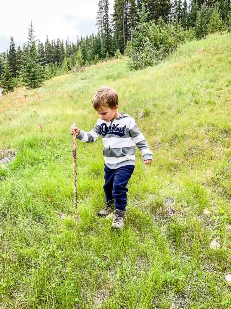 Hiking in Banff National Park with kids