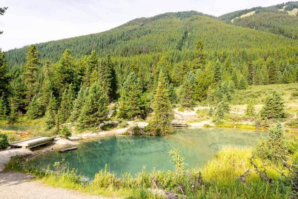 Hiking to the Ink Pots in Banff National Park