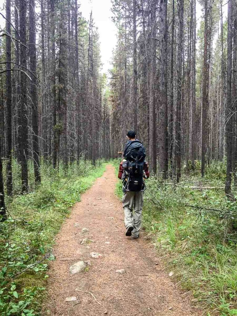 Hiking to Ink Pots via Moose Meadows with kids