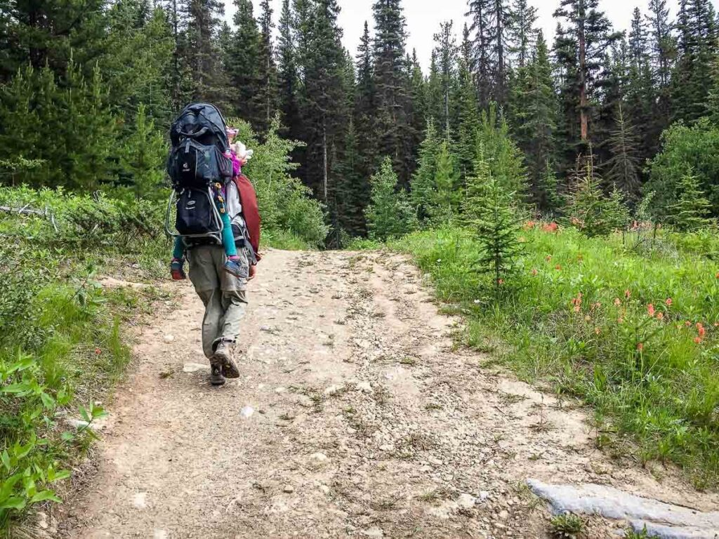 Hiking to Ink Pots via Moose Meadows with kid in backpack carrier