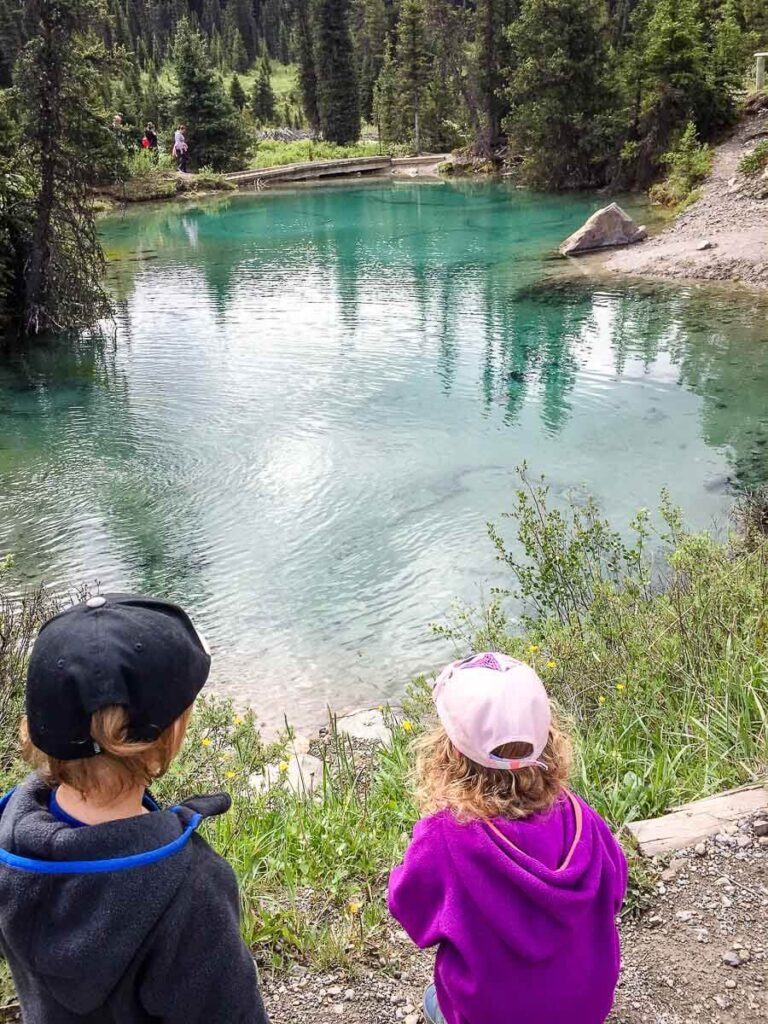 kids looking at Ink Pots Pools in Banff