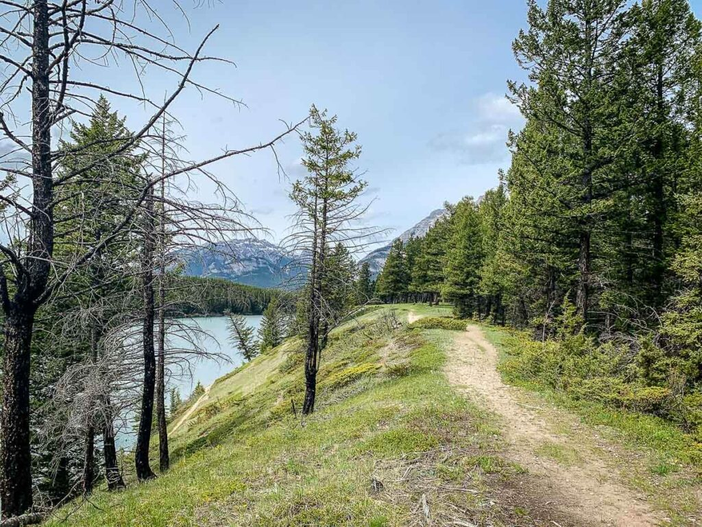 the Johnson Lake trail is a great hike around a lake in Banff